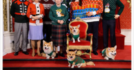 Royale Weihnachtspullover