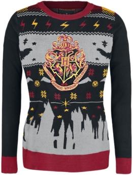 Harry Potter Hogwarts Girl-Pullover multicolor